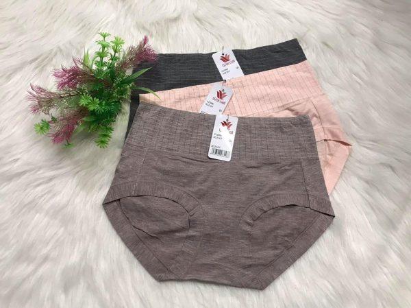 quần lót cạp cao cotton tre